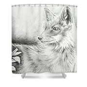 Alert Fox  Shower Curtain