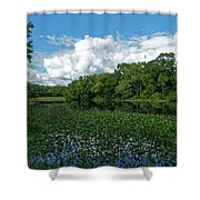 Alexander Springs Shower Curtain