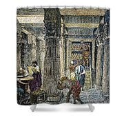 Alexandria: Library Shower Curtain