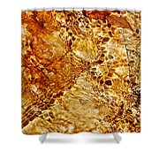 Alfred Caldwell Lily Pool Springs 2 Shower Curtain