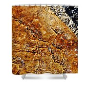 Alfred Caldwell Lily Pool Springs Shower Curtain