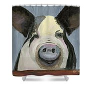 Alfred The Boar Shower Curtain