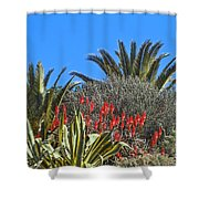 Algarve Plants Shower Curtain