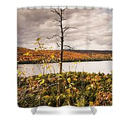 Algonquin Autumn Shower Curtain