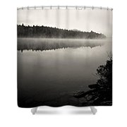 Algonquin Fog Shower Curtain