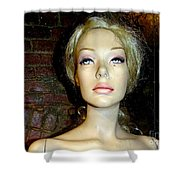 Alice In Alley Shower Curtain