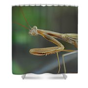 Aliens Among Us Shower Curtain