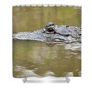 Alligator Stealth Shower Curtain