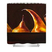 All Aboard Shower Curtain by Shannon Grissom