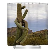 All Arms Shower Curtain