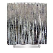 All Aspen Shower Curtain
