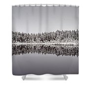 All Colors Of Gray. Panorama Shower Curtain