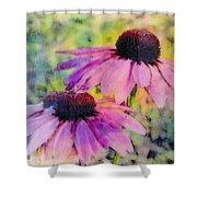 All Delights Are Vain Shower Curtain