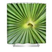 All Green Shower Curtain