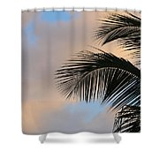 All Its Good Shower Curtain