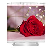 All Occasion Rose Shower Curtain