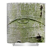 All-seeing Eye Of God On A Tree Bark Shower Curtain