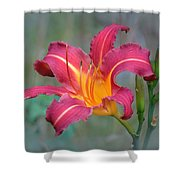 All Summer Lily Shower Curtain