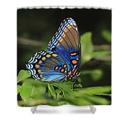All The Colors Of The Sunset Sky Shower Curtain