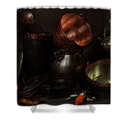 Allegory Of The Four Elements Shower Curtain