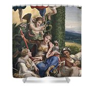 Allegory Of The Virtues Shower Curtain
