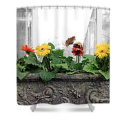 Allen Garden - Toronto Shower Curtain
