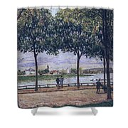 Alley Of Chestnut Trees Shower Curtain