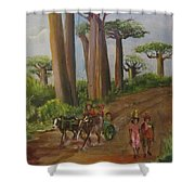 Alley Of The Baobabs Shower Curtain