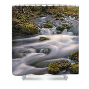 Alley Spring Rapids Fall Mo Dsc09212 Shower Curtain