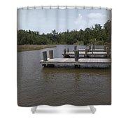 Alligator Bayou Shower Curtain
