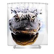 Alligator Fangs 2 Shower Curtain