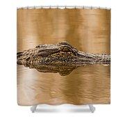 Alligator Head Shower Curtain