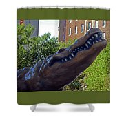 Alligator Statue 4 Shower Curtain