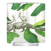 Alligator With Pelicans Shower Curtain