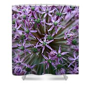 Allium Macro Shower Curtain