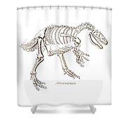 Allosaurus Skeleton Shower Curtain