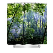Allschwiler Wald Shower Curtain