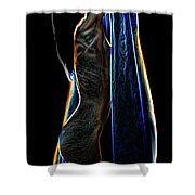 Allure Ll Shower Curtain
