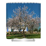 Almond Tree Cottage Shower Curtain