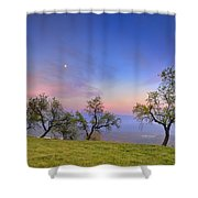 Almonds And Moon Shower Curtain
