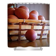 Almost All My Eggs In One Basket Shower Curtain