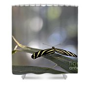 Almost Flat Lines Shower Curtain