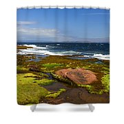 Almost Unreal Shower Curtain