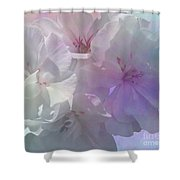 Almost White Shower Curtain