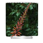 Aloe Flower Shower Curtain