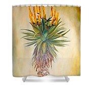 Aloe In The Sunlight Shower Curtain