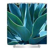 Aloe 2 Shower Curtain