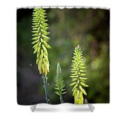Aloe Vera Blooms Shower Curtain