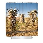 Aloe Vera Trees Botswana Shower Curtain