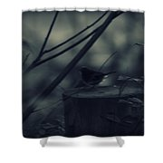 Alone In The Darkness Shower Curtain
